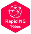 balik-net-rapid-ng